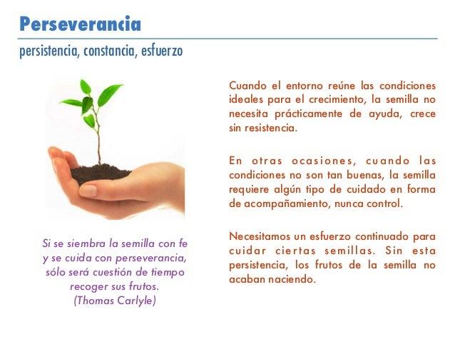 Perseverancia persistencia, constancia, esfuerzo Cuando el entorno reúne las condiciones ideales para el crecimiento, la s...