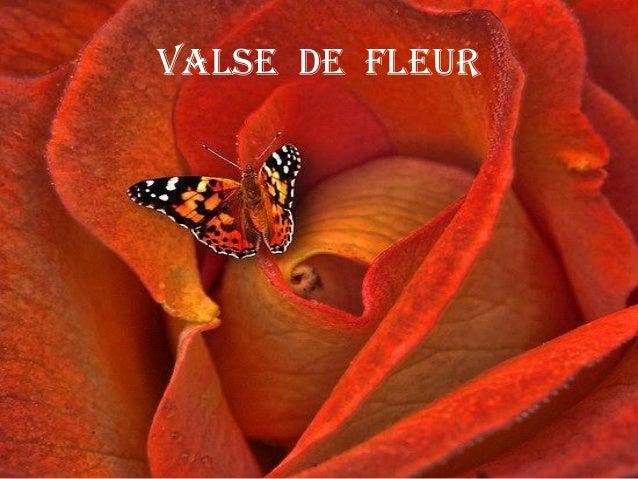 Valse de fleur