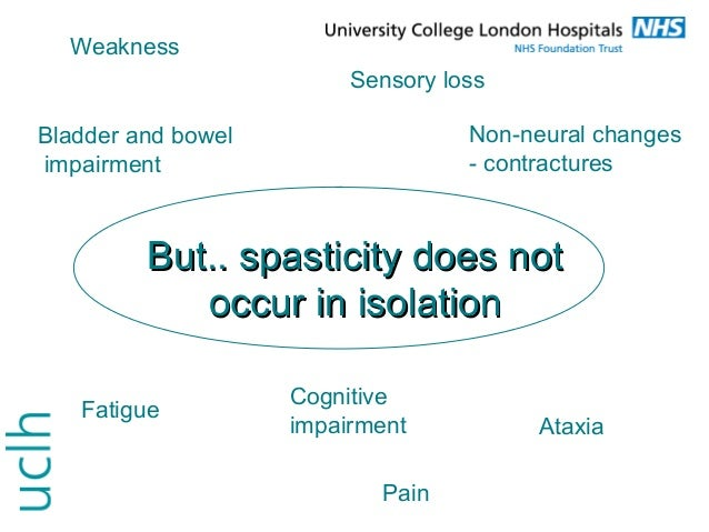 management of tremor and spasticity in ms, Skeleton
