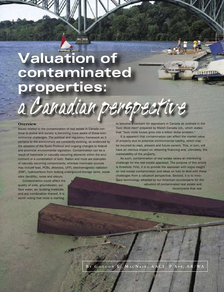 Valuation of contaminated properties: a Canadian perspective Overview                                                     ...