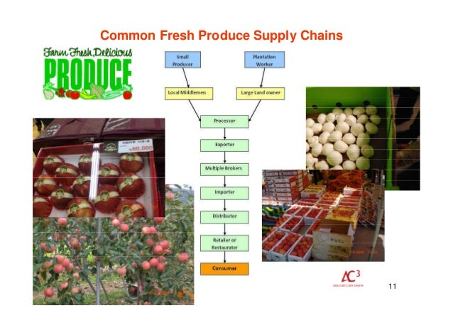 diagram figure processed chains tomato and value scientific fresh