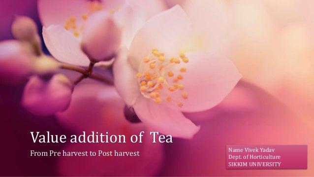 Value addition of Tea From Pre harvest to Post harvest Name Vivek Yadav Dept. of Horticulture SIKKIM UNIVERSITY
