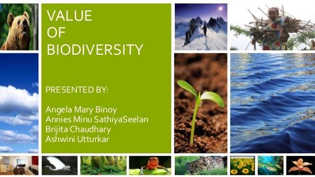 VALUE OF BIODIVERSITY PRESENTED BY:  Angela Mary Binoy Annies Minu SathiyaSeelan Brijita Chaudhary Ashwini Utturkar