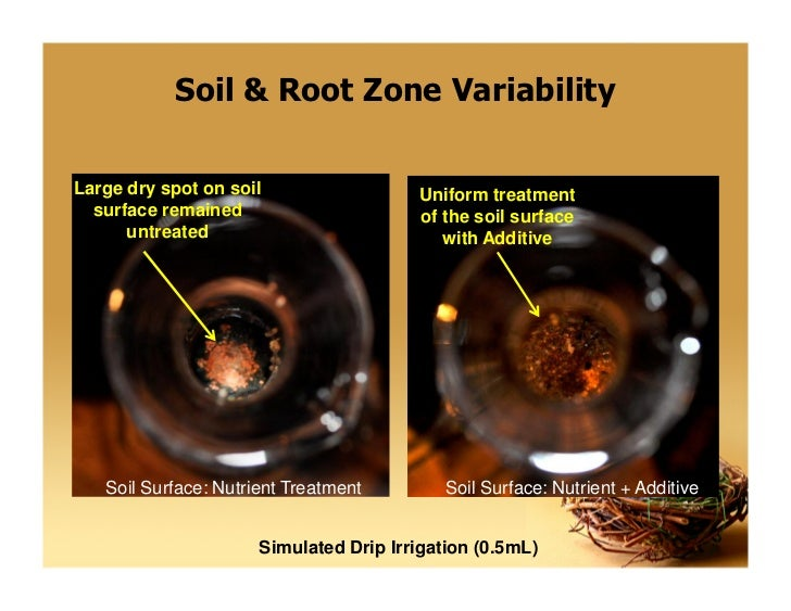 Valuing water soil to achieve sustainability food security for Soil zone definition