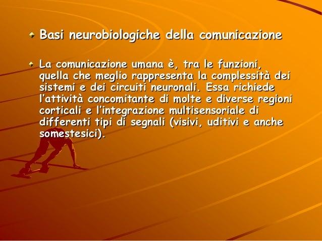 Basi neurobiologiche della comunicazione La comunicazione umana è, tra le funzioni, quella che meglio rappresenta la compl...