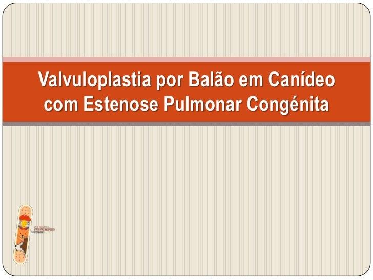 Valvuloplastia por Balão em Canídeo com Estenose Pulmonar Congénita <br />