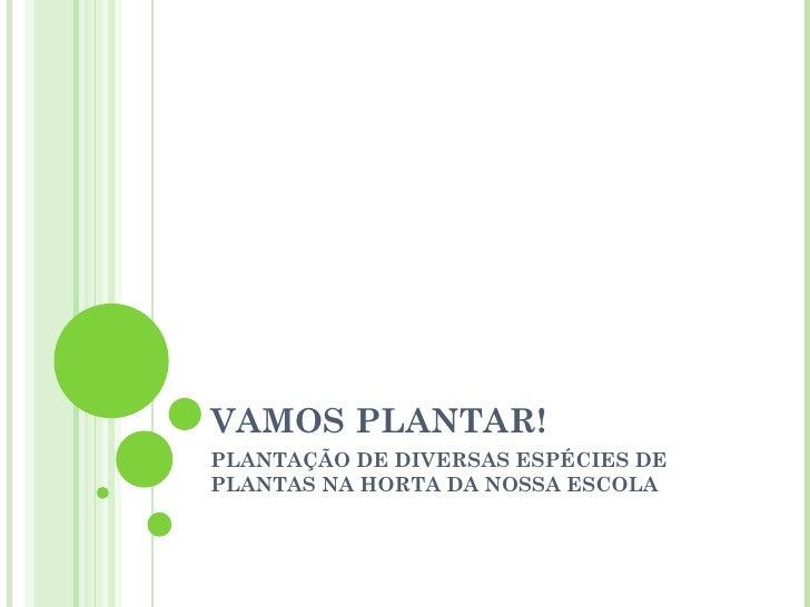 VAMOS PLANTAR!PLANTAÇÃO DE DIVERSAS ESPÉCIES DEPLANTAS NA HORTA DA NOSSA ESCOLA