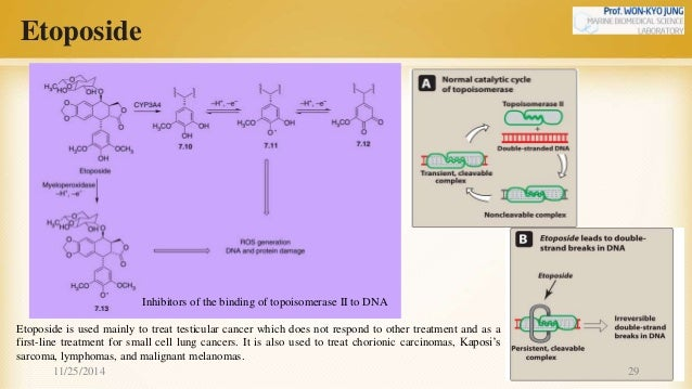 Van tinh nguyen chapter 39-anticancer drugs