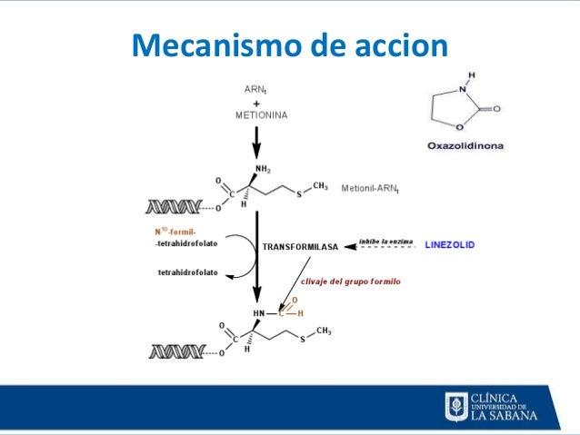 efectos secundarios de inyectarse esteroides