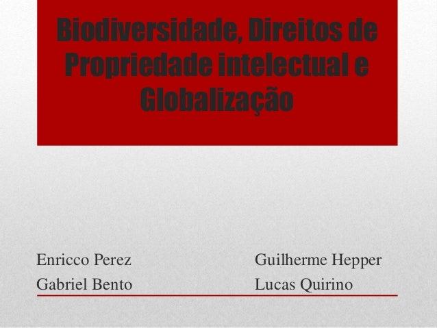Biodiversidade, Direitos de Propriedade intelectual e Globalização Enricco Perez Guilherme Hepper Gabriel Bento Lucas Quir...
