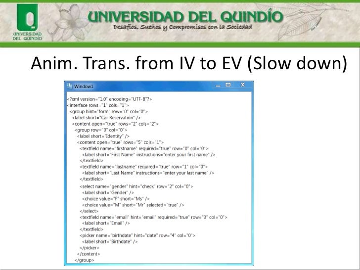 Anim. Trans. from IV to EV (Slow down)