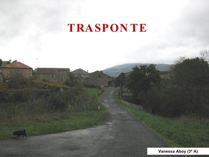 TRASPONTE Vanessa Aboy (3º A)