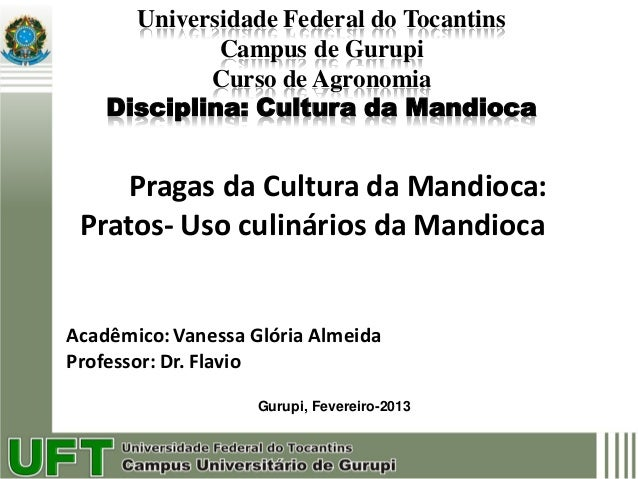 Universidade Federal do Tocantins             Campus de Gurupi            Curso de Agronomia    Disciplina: Cultura da Man...