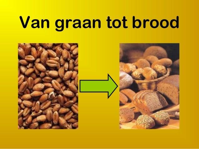 Van graan tot brood
