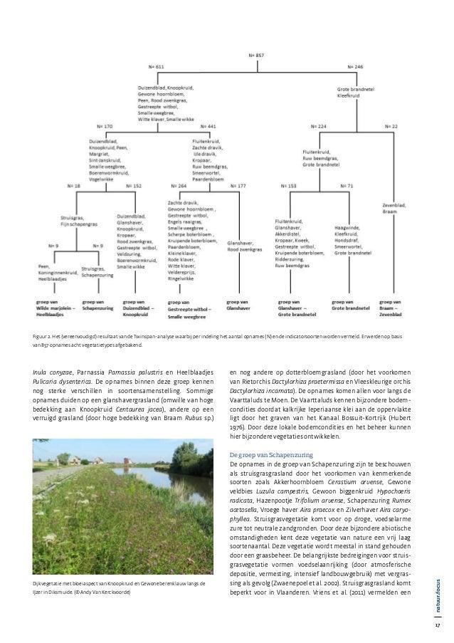 17 natuur•focus 17 natuur•focus Inula conyzae, Parnassia Parnassia palustris en Heelblaadjes Pulicaria dysenterica. De opn...