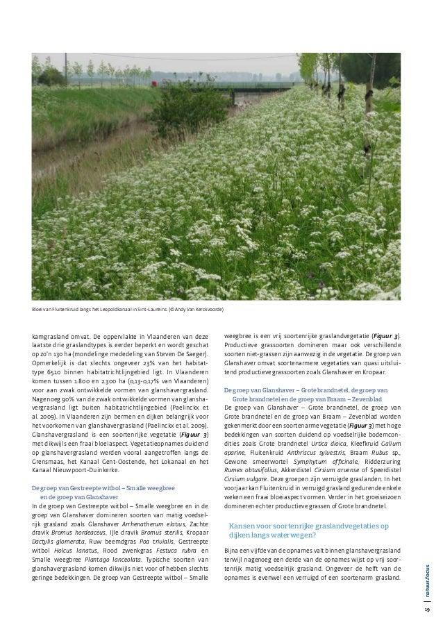 19 natuur•focus 19 natuur•focus kamgrasland omvat. De oppervlakte in Vlaanderen van deze laatste drie graslandtypes is eer...