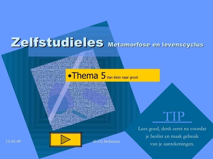Zelfstudieles  Metamorfose en levenscyclus TIP  Lees goed, denk eerst na voordat je beslist en maak gebruik van je aanteke...
