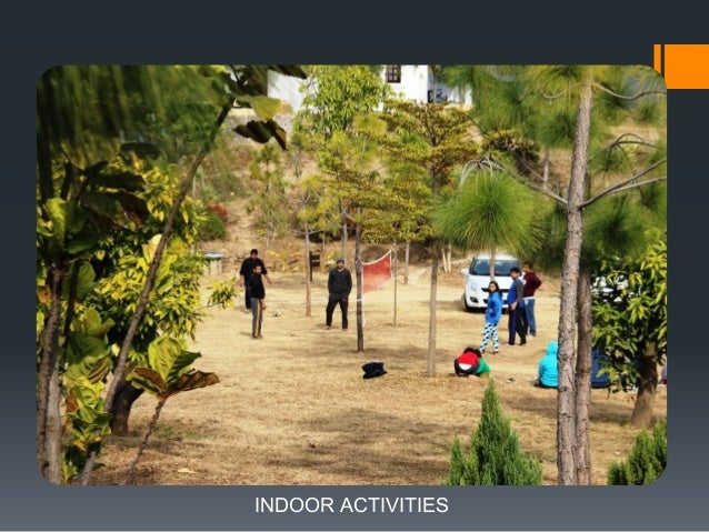 GUESTS ENJOYING VOLLEYBALL