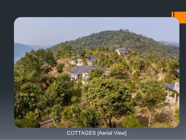 COTTAGES [Aerial View]