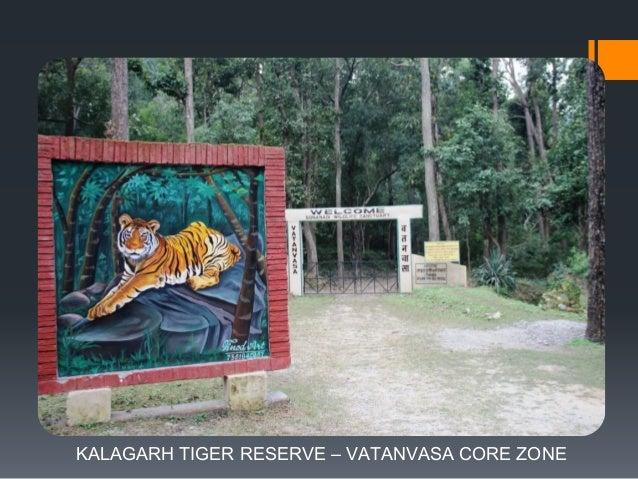JEEP SAFARI INSIDE KALAGARH TIGER RESERVE – MAIDAWAN CORE ZONE
