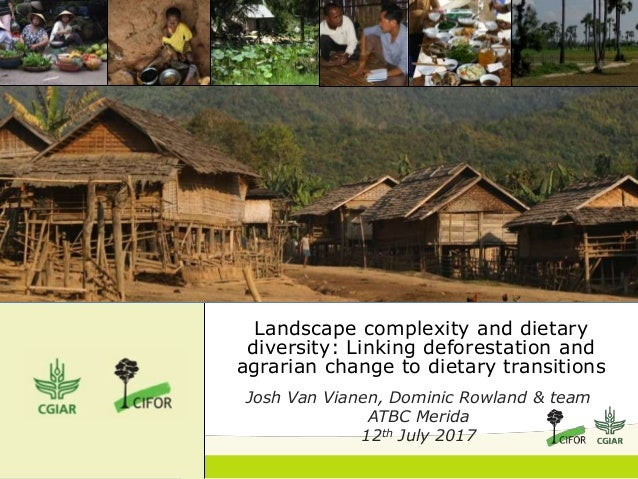 Landscape complexity and dietary diversity: Linking deforestation and agrarian change to dietary transitions Josh Van Vian...