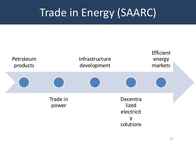 impact of saarc on indian economy project