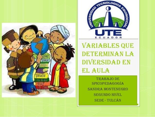VARIABLES QUEDETERMINAN LADIVERSIDAD ENEL AULA     TRABAJO DE   SPICOPEDAGOGÍA SANDRA MONTENEGRO    SEGUNDO NIVEL    SEDE ...