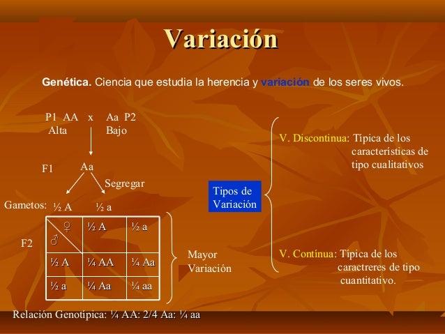 Variación Genética. Ciencia que estudia la herencia y variación de los seres vivos. P1 AA x Alta  Aa P2 Bajo  V. Discontin...