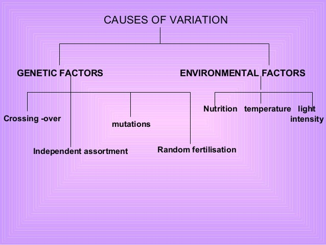 causes of variation Learn about special cause variation in this entry from our online guide, the continuous improvement companion.