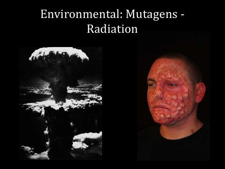 environmental mutagens - photo #4