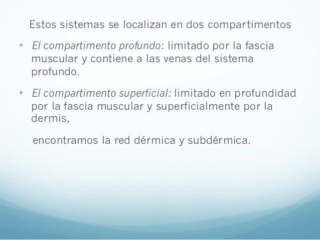Varices. tratamiento integral con ozonoterapia Slide 3