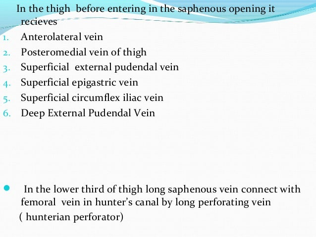 In the thigh before entering in the saphenous opening it recieves 1. Anterolateral vein 2. Posteromedial vein of thigh 3. ...