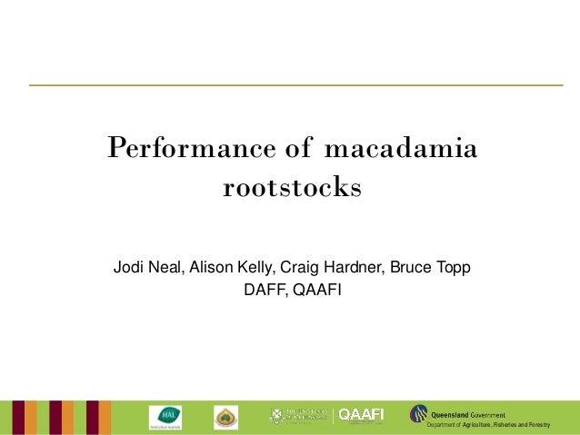Performance of macadamia       rootstocksJodi Neal, Alison Kelly, Craig Hardner, Bruce Topp                   DAFF, QAAFI ...
