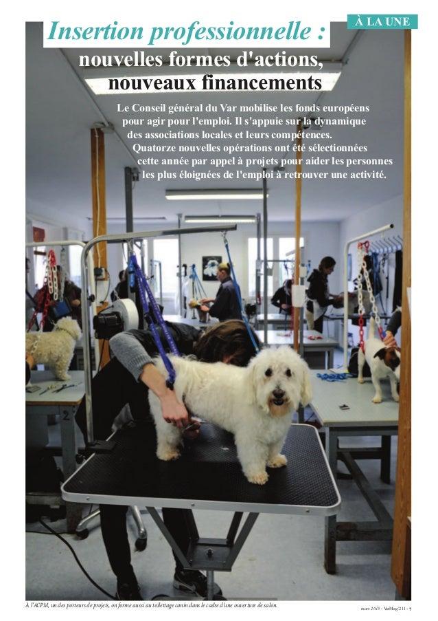 mars 2015 - VarMag'211 - 7 À LA UNE À l'ACPM,un des porteurs de projets,on forme aussi au toilettage canin dans le cadre d...