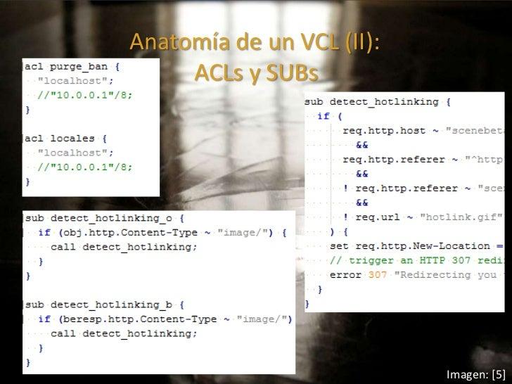 Encantador Anatomía De Acl Viñeta - Anatomía de Las Imágenesdel ...