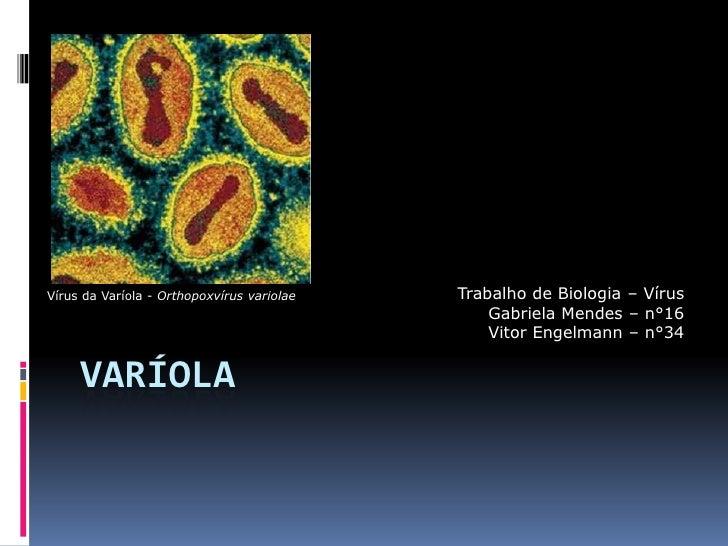 Varíola<br />Trabalho de Biologia – Vírus<br />Gabriela Mendes – n°16<br />Vitor Engelmann – n°34<br />Vírus da Varíola - ...