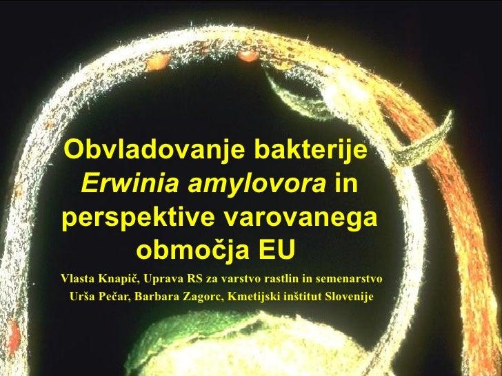 Obvladovanje bakterije Erwinia amylovora inperspektive varovanega     območja EUVlasta Knapič, Uprava RS za varstvo rastli...