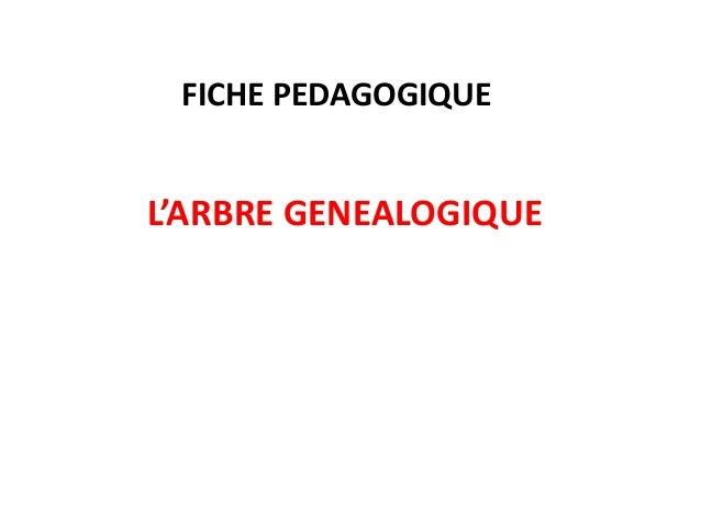 FICHE PEDAGOGIQUE  L'ARBRE GENEALOGIQUE