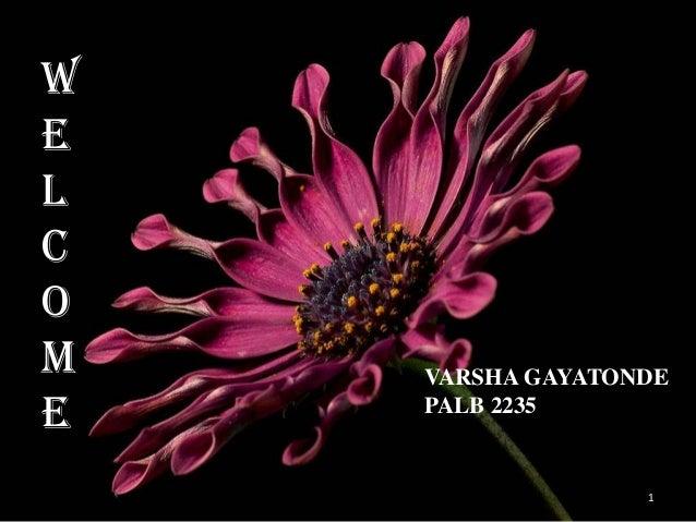W E L C O M E  Flow of  VARSHA GAYATONDE PALB 2235  1