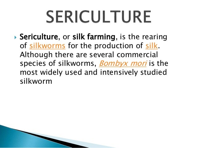  Sericulture, or silk farming, is the rearing  of silkworms for the production of silk.  Although there are several comme...