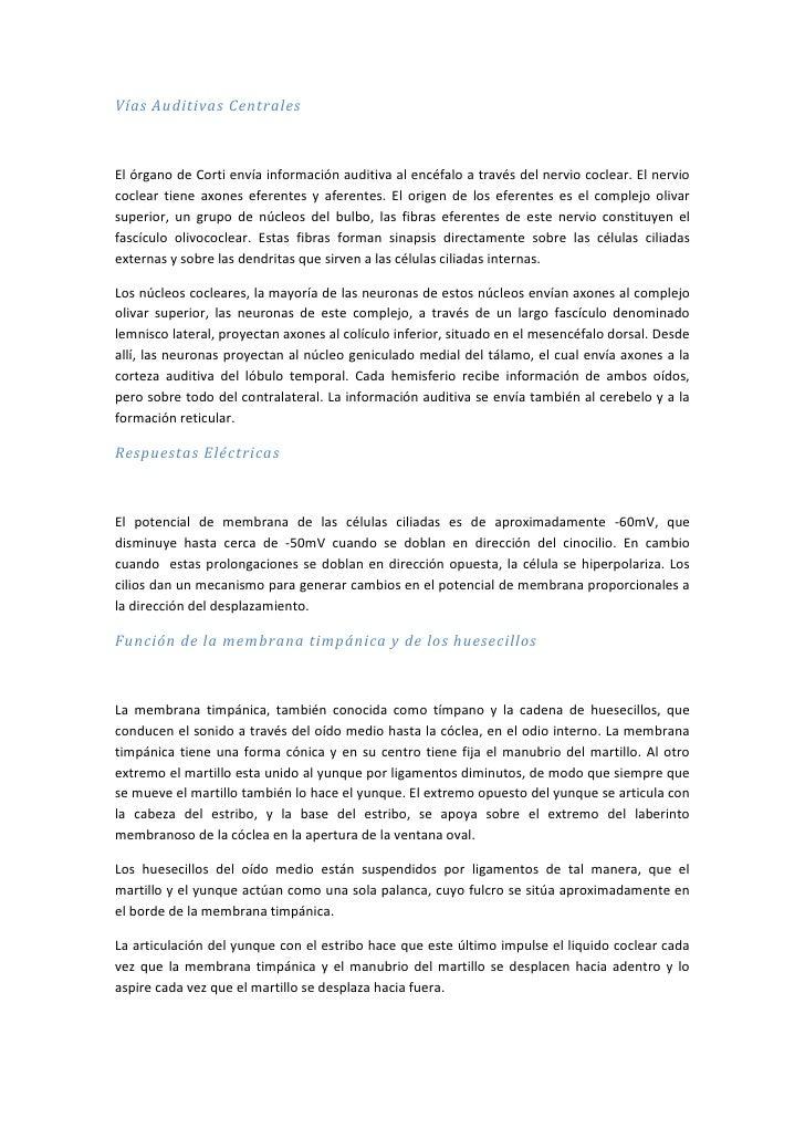 Vías Auditivas Centrales<br />El órgano de Corti envía información auditiva al encéfalo a través del nervio coclear. El ne...