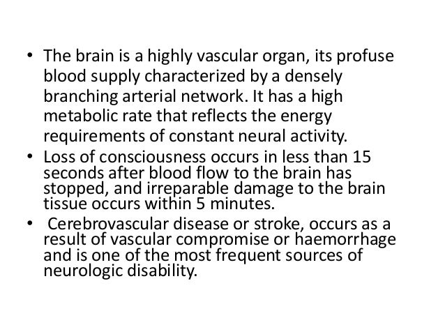 • The brain is a highly vascular organ, its profuse blood supply characterized by a densely branching arterial network. It...