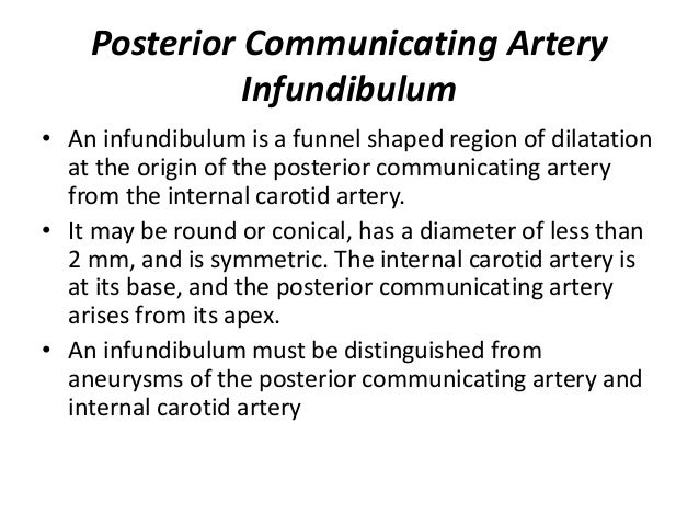 A2 segment- Interhemispheric segment From ACoA junction Ascend in front of 3rd ventricle in cistern of lamina terminalis C...