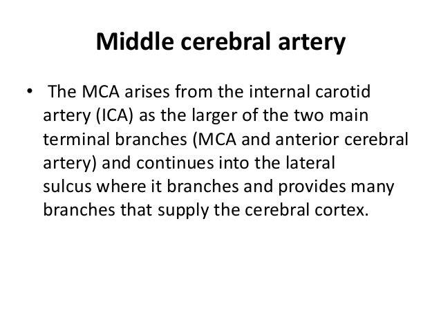 Segments • The vertebral artery is typically divided into 4 segments: – V1: origin to transverse foramen of C6 – V2: from ...