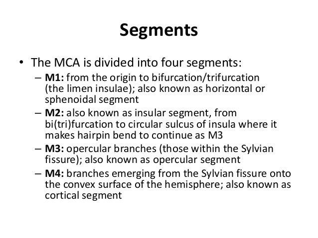 Extracranial VA branches 1. V1-Small segmental spinal/ meningeal/ muscular branches. 2. V2- Anterior Meningeal artery , mu...