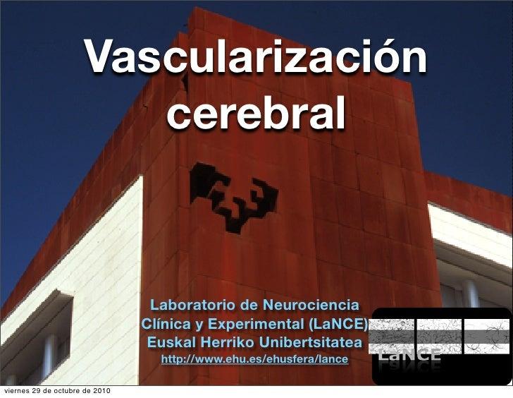 Vascularización                       cerebral                                Laboratorio de Neurociencia                 ...