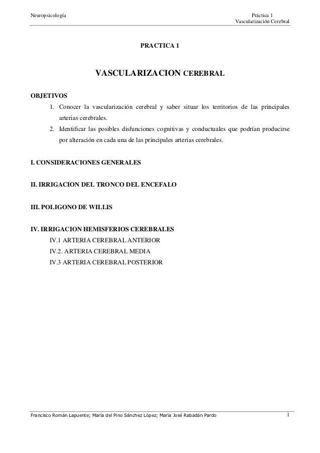 Neuropsicología                                                                           Práctica 1                      ...