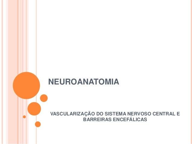 NEUROANATOMIA  VASCULARIZAÇÃO DO SISTEMA NERVOSO CENTRAL E BARREIRAS ENCEFÁLICAS