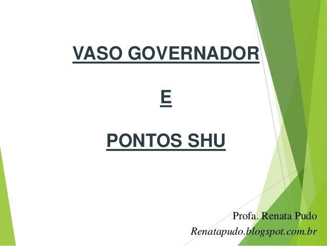 VASO GOVERNADOREPONTOS SHUProfa. Renata PudoRenatapudo.blogspot.com.br