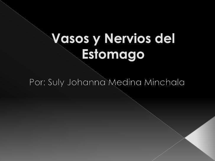 Vasos y Nervios del Estomago<br />Por: Suly Johanna Medina Minchala<br />